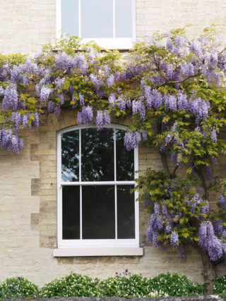 The rose collection Sash Windows Carlton Cottage