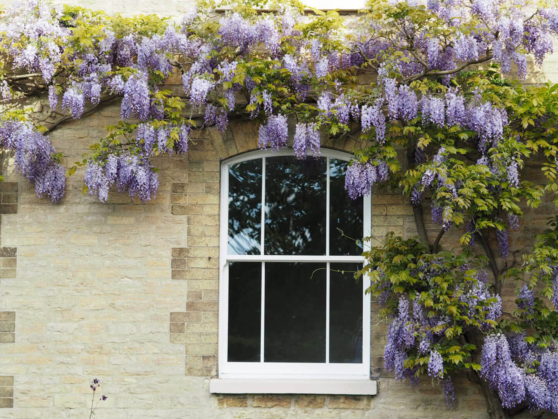 Roseview Ultimate Sash Windows